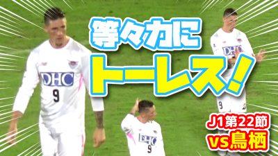 【オガフロ】川崎フロンターレ対サガン鳥栖の試合を観に行ってきたよ(J1第22節)